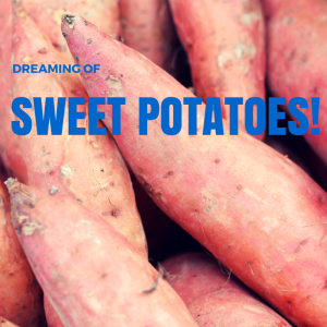 Dreaming of Sweet Potatoes