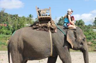 Elephant Neck Luang Prabang