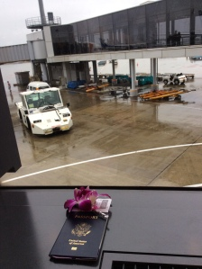 Thai Airways Orchid in Narita
